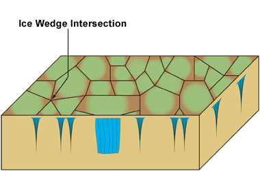 Diagram illustrating a cross-cut of an ice wedge polygonal ground.